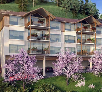 Hill Homes Kasauli